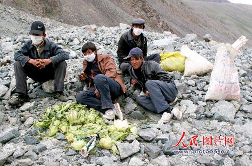 7月9日,在新疆哈密东天山喀尔里克冰川下休息的盗采雪莲人员。