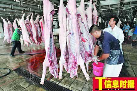 为保证猪肉质量,增城将生猪集中屠宰。