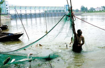 2007年7月17日,安徽阜南王家坝口,泄洪区的渔民在捕鱼