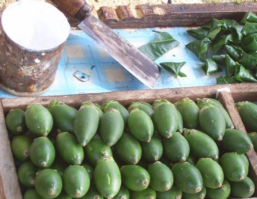 长期吃槟榔人们的照片图片