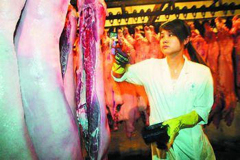 长沙四大屠宰厂下降量回升猪肉价屠宰(图)莲子红薯图片