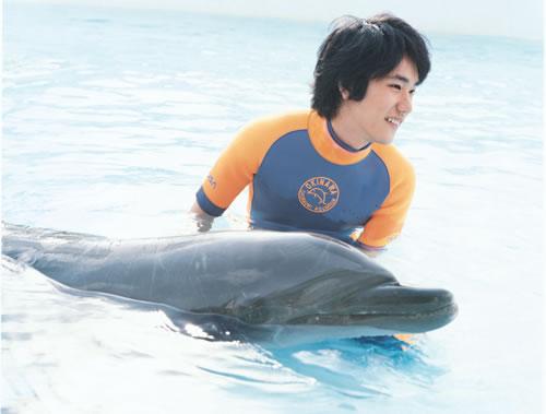 《海豚 再一次向着宇宙》