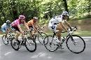 图文:2007环法第18赛段赛况 沿途茂密树林