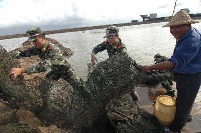 台风临近,昨日,边防官兵在浙江台州市前所镇沿江养殖基地帮助养殖户收拾渔具。新华社图