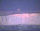 南极科考潜规则的背后