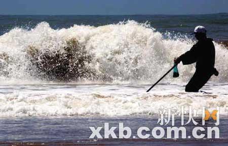 """昨日,一位渔民在海滩""""赶海""""捕捞海鲜。"""