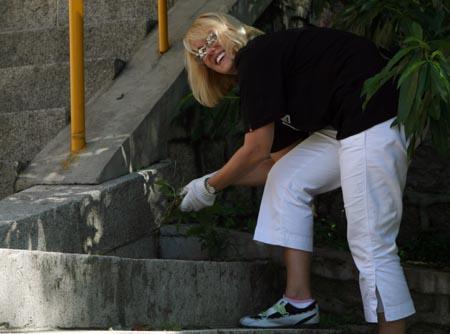 图文:奥运家庭10强游北京 捡垃圾