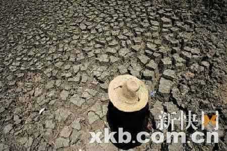 鱼塘干涸龟裂,玉米干枯而死,深井见底,插秧无水。因为久旱无雨,韶关市今夏旱情严重,目前已有2.85万人饮水受到影响,需要靠挑水解决饮水问题。