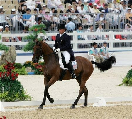 图文:奥运马术香港测试赛 美国骑手戴维森参赛