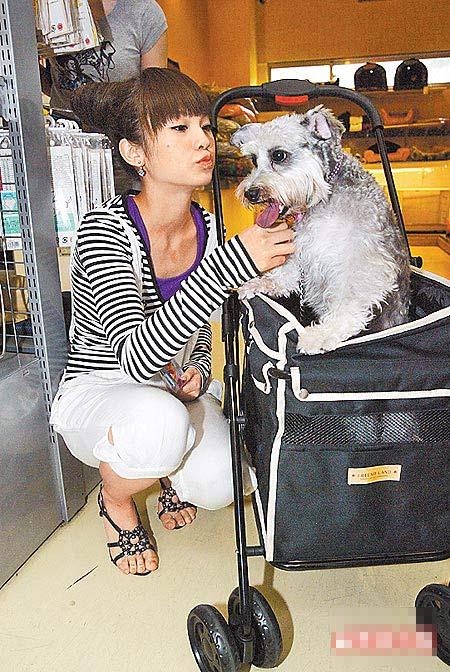 杨丞琳很宠爱Yumi,曾带它逛宠物店挑衣服