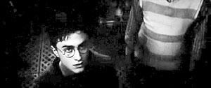 哈利刚看见预言球时,角度是仰视