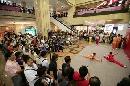 图文:香港好运动大汇演 武术表演令人叹为观止