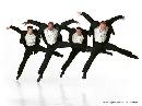 资料图片:保罗-泰勒舞团剧照 9