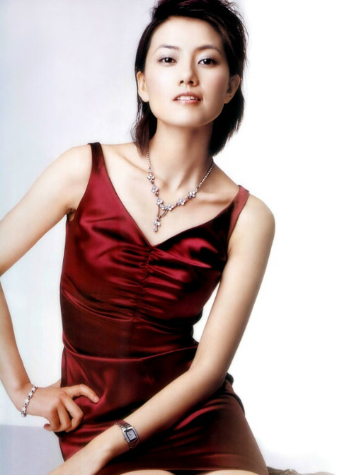 第十二届中国电影华表奖出席影人阵容 - 高圆圆