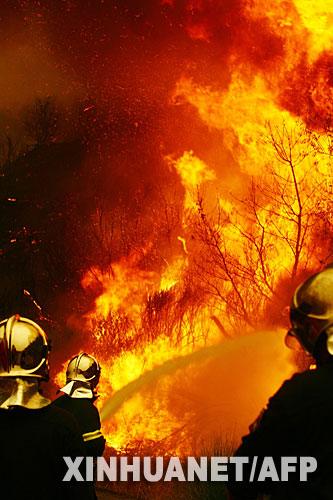 8月27日,消防员在希腊伯罗奔尼撒半岛一个村庄附近的火场灭火。新华社 法新