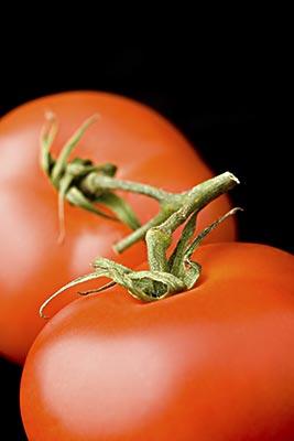 多吃番茄好处多多(组图)