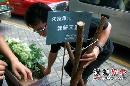 组图:红姑丈夫殡仪馆设灵 委托兄长朱家欣打点