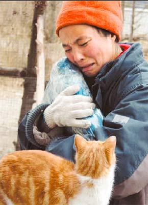"""多姿融怀抱公猫""""刘小豹""""的尸体"""