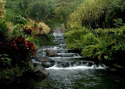 哥斯达黎加中美洲花园[图]