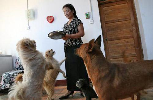 刘小容每天都要给给狗做好吃的,为狗治病。刘小荣觉得狗狗在她家已经享受幸福了,就会为狗做安乐死。