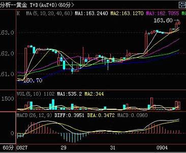 上海黄金交易所黄金延期AU(T+D)60分钟线走势图