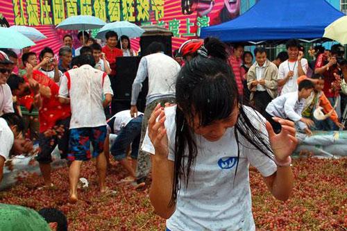 市民们在倾倒了上千斤红提的池子里面,尽情的狂欢。