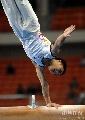 图文:第六届城运会体操男团 单臂支撑