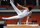 图文:第六届城运会体操男团 轻松自如