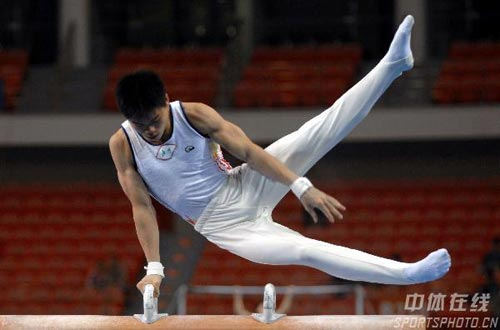 图文:第六届城运会体操男团 飘逸的动作