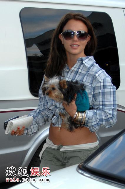 布兰妮怀抱宠物狗露出小肚腩