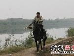 杨子甩起扫帚驯服野马