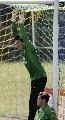 图文:[世界杯预选赛]巴西队备战 多尼和塞萨尔