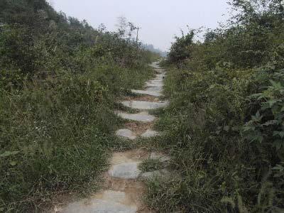 湘粤古道隐藏在湘南的崇山峻岭之中。 汤红辉 摄