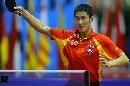 图文:男乒世界杯半决赛 王励勤反手显大将风度