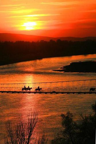 10月13日傍晚,一队驼队在新疆额尔齐斯河畔五彩湾景点的牧道桥上行走。