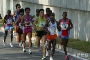 图文:07北京马拉松开跑 参赛运动员奔跑树荫中