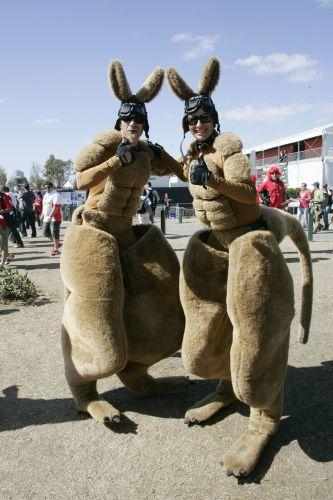 """图文:[F1]07澳大利亚站回顾 澳洲""""袋鼠人"""""""