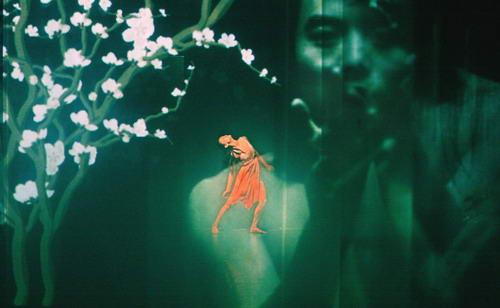 资料图片:现代舞蹈戏剧-惊梦 3