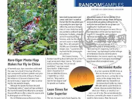 11月9日,《科学》在官网上刊出本期杂志的电子版
