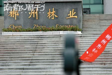 原郴州市林业局副局长骆礼忠在此案中被判了有期徒刑10年6个月,他的妻子郭晓凤一直在替丈夫申诉。