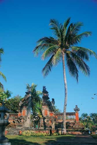 巴厘岛 打开心灵之门