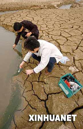 11月15日,湖南大学的两名学生在河床上取实验水样。新华社记者 赵众志摄