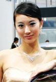 2007第五届广州车展