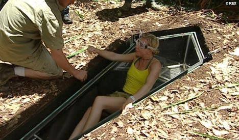英国大胆美女与两万只活蟑螂共同棺下葬图 搜狐