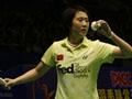 2007中国羽毛球公开赛,2007中国羽毛球超级赛,林丹,谢杏芳,陶菲克,鲍春来