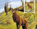 十种已灭绝的最著名动物