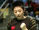 2007香港羽毛球公开赛,2007香港羽毛球超级赛,林丹,谢杏芳,陶菲克,鲍春来