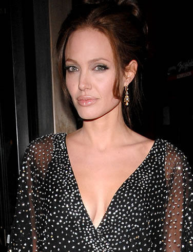 2.安吉丽娜·朱莉(Angelina Jolie)——1500万美元-2000万美元