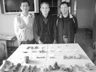 知道海南昌江发现40万年前哺乳动物化石吗?