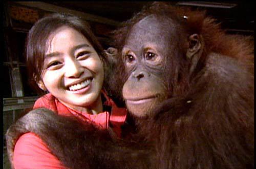 金泰熙与大猩猩亲密合影